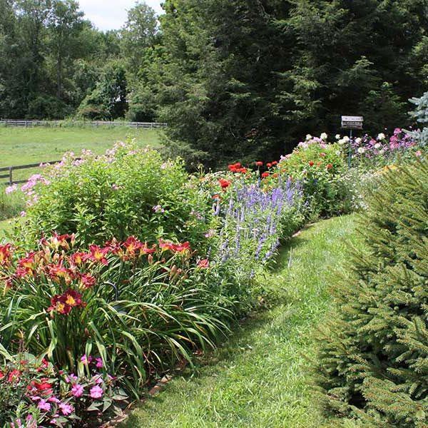 Hillside Garden | Andrew Zema's Landscaping & Excavating - Berkshire County, Columbia County, Rensselaer County