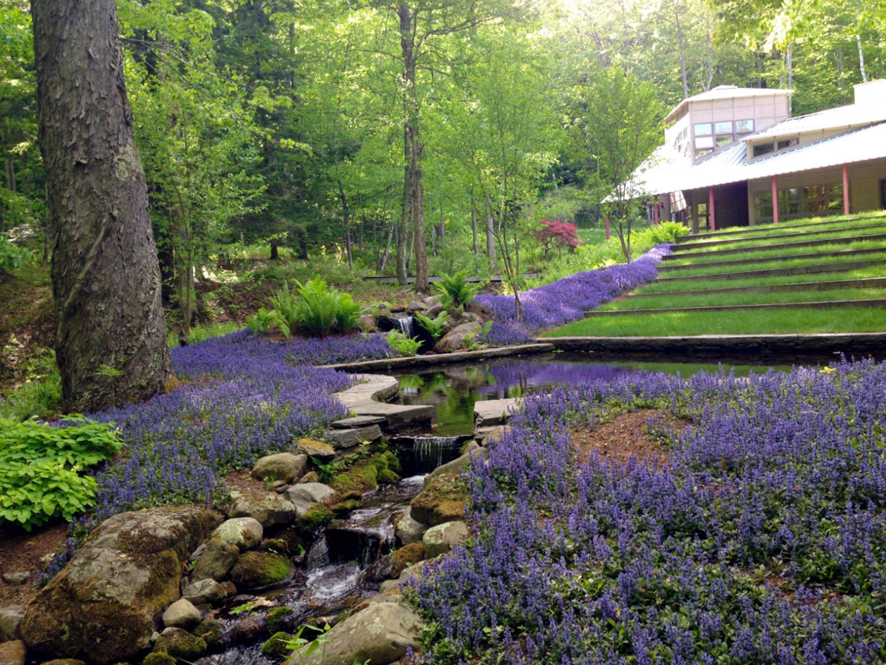 Flower Groundcover | Andrew Zema's Landscaping & Excavating - Berkshire County, Columbia County, Rensselaer County