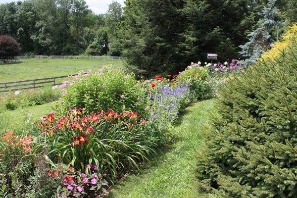Garden Planting | Andrew Zema's Landscaping & Excavating - Berkshire County, Columbia County, Rensselaer County