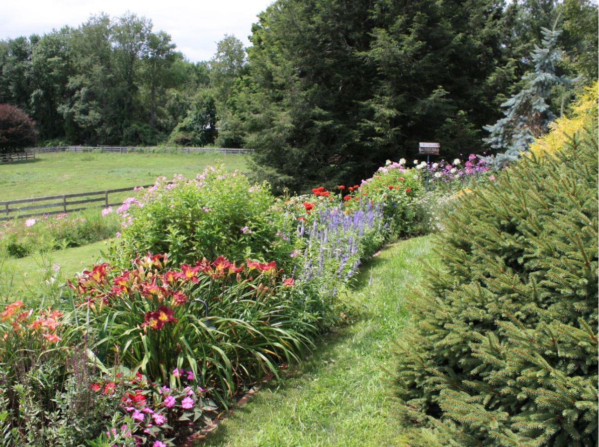 Planting   Andrew Zema's Landscaping & Excavating - Berkshire County, Columbia County, Rensselaer County